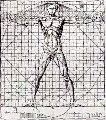 Fisioterapia hombre de virtuvio y la historia de la for Medidas antropometricas del cuerpo humano