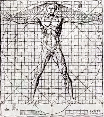 Fisioterapia hombre de virtuvio y la historia de la for Antropometria de la vivienda