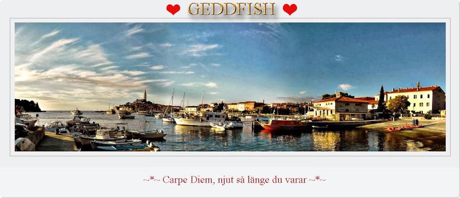 GeddFish ♥