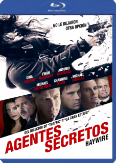 Agentes Secretos (2011) Dvdrip Latino [Accion]