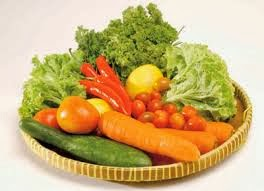 function of fiber diet foods