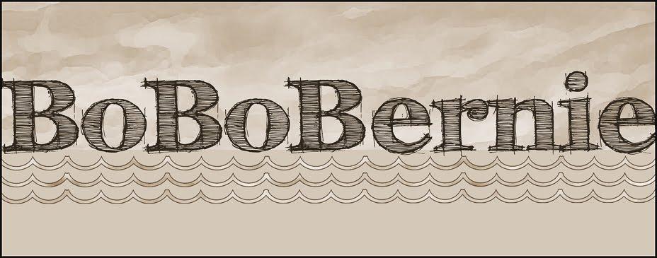 BoBoBernie Blog