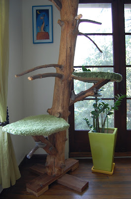 Classic cat tree from real tree