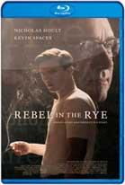 El Rebelde Oculto (2017) BRRip 720p Latino