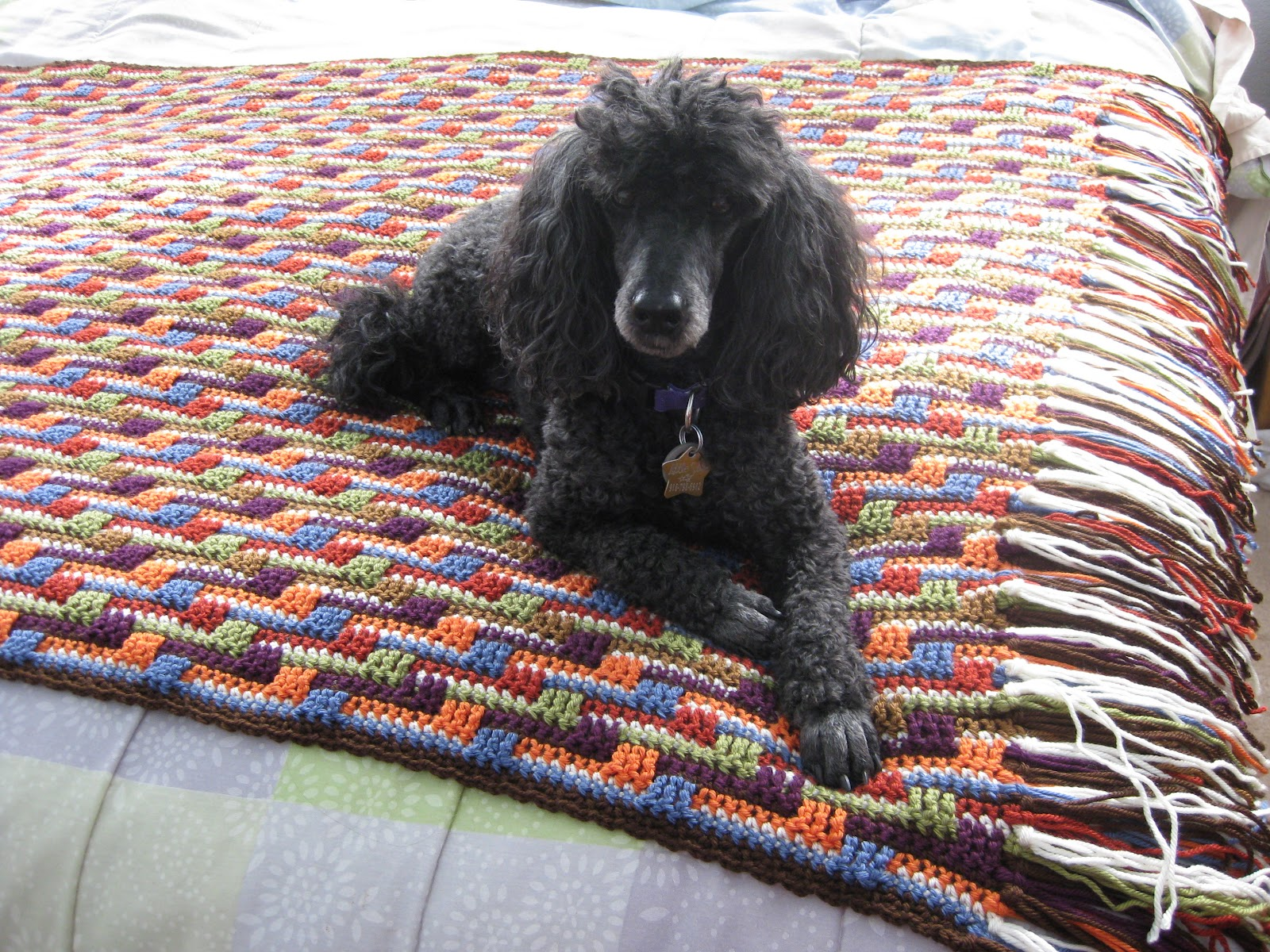 Crochet Zingy Pattern : Inspired Resourceful Creative: Zingy Zig Zags is finally ...
