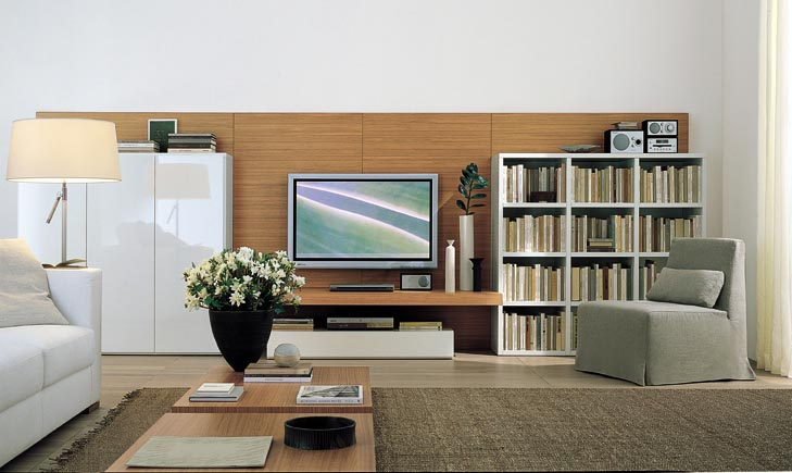 Modern TV Entertainment Wall Units
