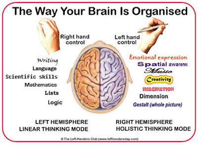 Left-handed-facts-Brain1+%25281%2529.jpg