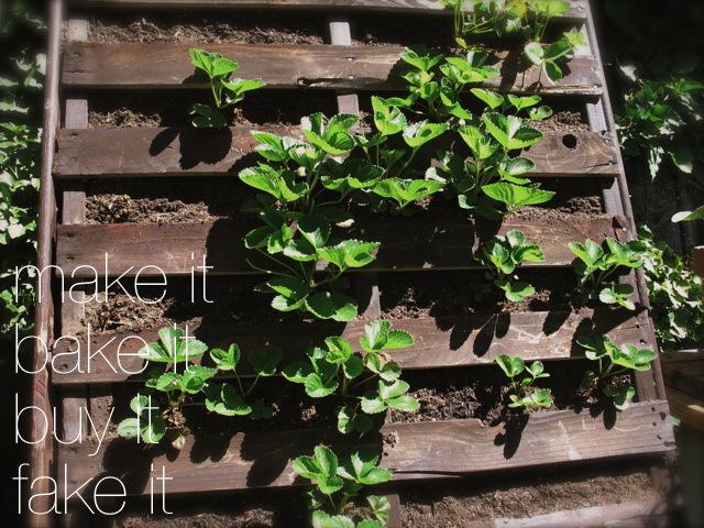 Vertical Pallet Planter for Strawberries