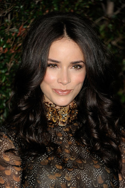 Celebrity Hairstyles Abigail Spencer Curly Long Hairstyles