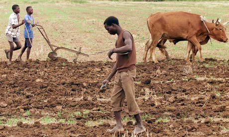 poverty and low production agriculture This has resulted in low yields, under-cultivation of land and a lack of value  addition to agricultural produce given the strong linkage between.