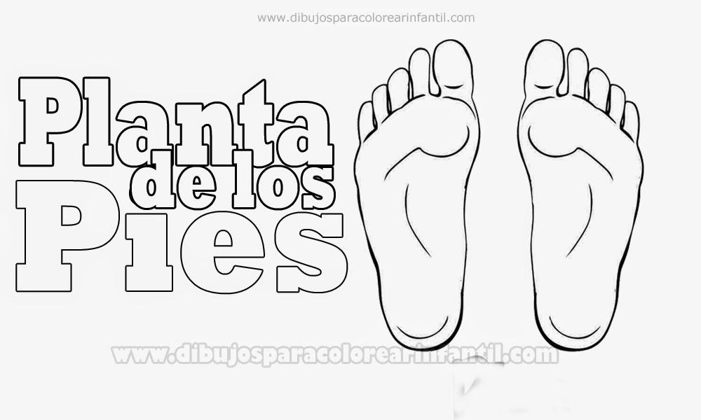 Dibujo de pies para colorear - Imagui