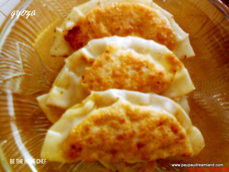 Gyoza (Japanese Pan Fried Dumplings) Recipe — Dishmaps