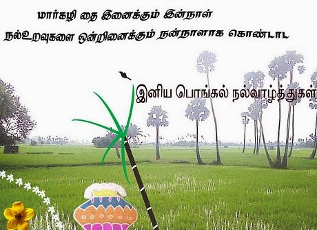 Happy Pongal 2016 Images Greetings Photos Pictures Collection