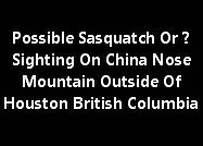 Possible Sasquatch Or ? Sighting On China Nose Mountain Outside Of Houston British Columbia