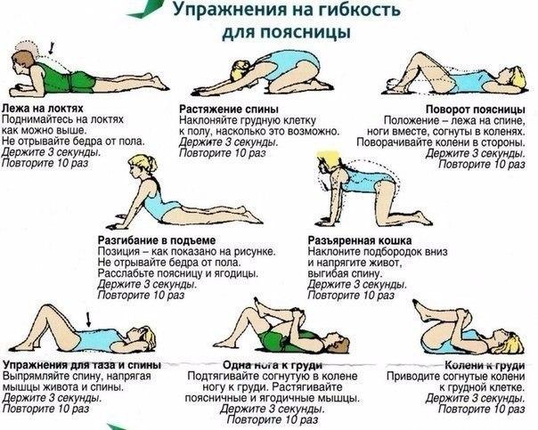 Как сделать гибкую спину