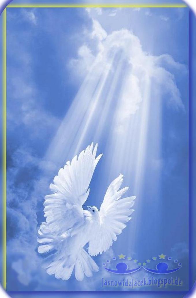 Gołąbek biały na niebie