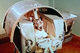 Laika la perrita que viajo al Espacio