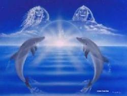 Delfines de amor