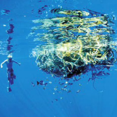 fishing gear ocean trash