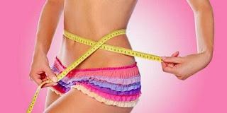 Mencoba Layanan WRP Diet Program,
