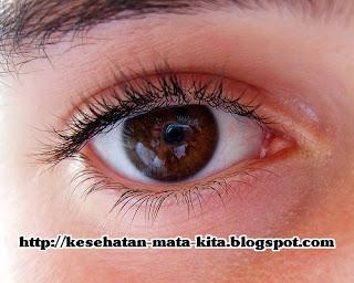 Mata sehat manusia