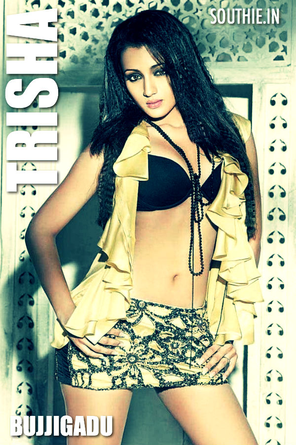 Trisha was seen in Bujjigadu in a multistarrer opposite Prabhas and Mohan Babu.