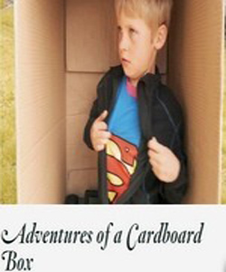 The Adventures of a Cardboard Box (2011)