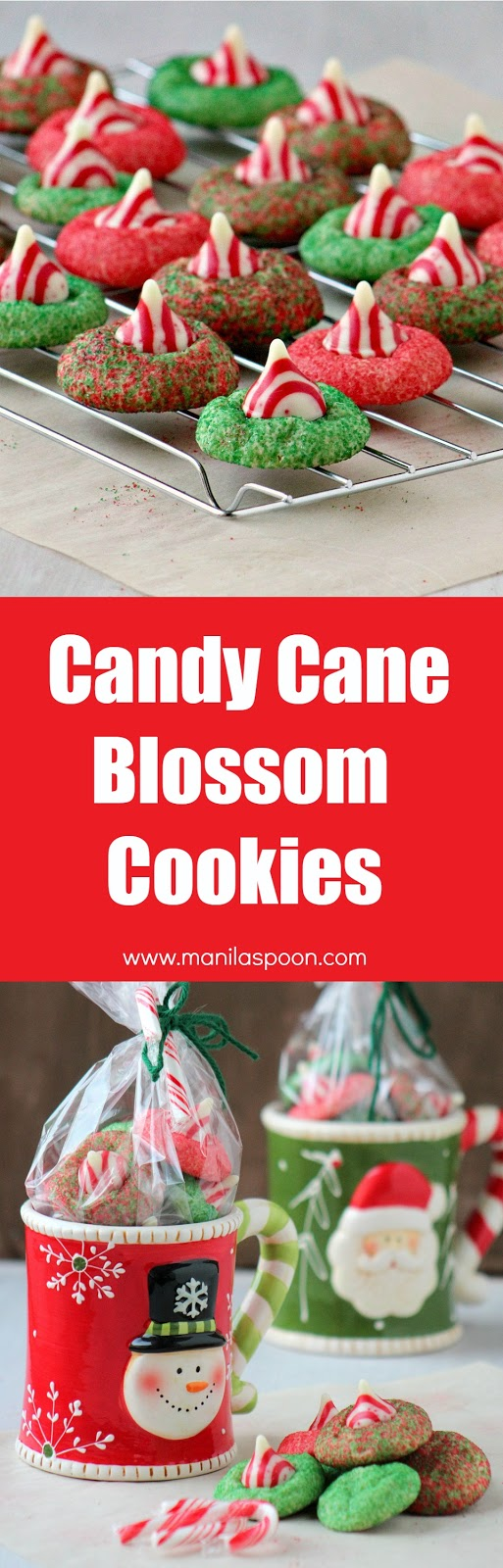 These festive classic Candy Cane Blossom Cookies are not just gorgeous they are delicious, too. Perfect as gift for teachers, family, and friends.I gave this as a gift in a mug and it was well-loved! | manilaspoon