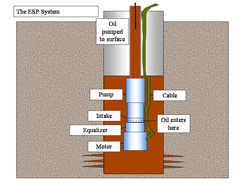Electrical Submersible Pump (E.S.P)