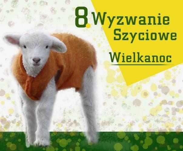 8. Wyzwanie Poznań Szyje