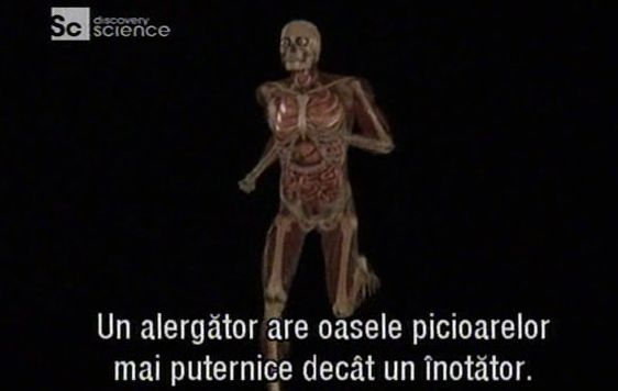 Informatii utile despre organismul uman. Human body - Ultimate machine. Documentar Discovery Channel