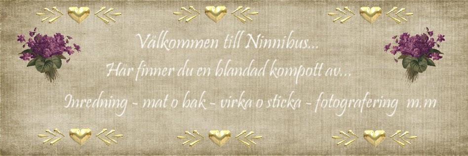 Välkommen till Ninnibus fotoblogg..