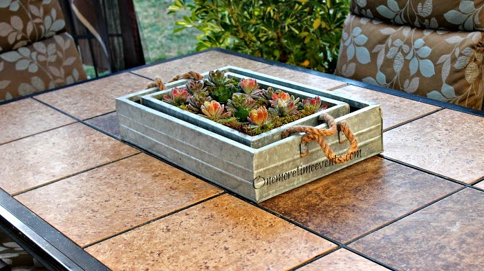 Planting Faux Succulents in galvanized tray at One More Time Events.com