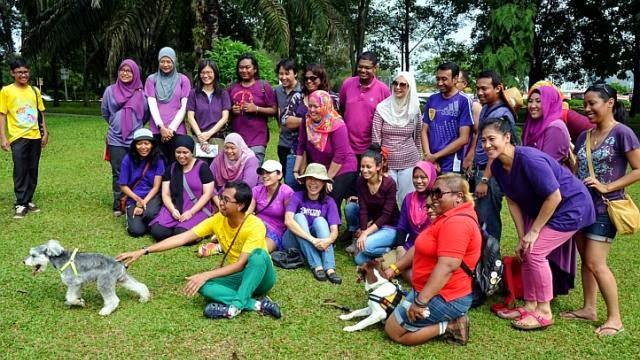 dog patting Malaysia, Islam dog, dog islam