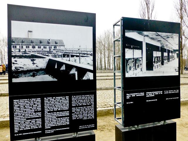 Birkenau, Cámara de Gas y Crematorio número II
