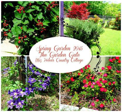 Spring Garden 2015