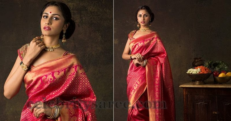 Designs For Saree Blouses