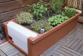 Creare giardini l 39 orto balcone - Creare un giardino sul balcone ...