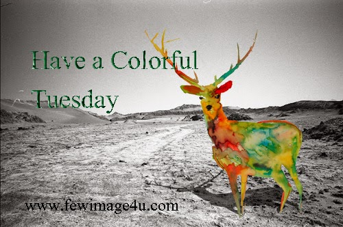 Facebook images orkut scraps quotes with greetings photo scraps tuesday scraps happy tuesday greeting cards happy tuesday poemshappy tuesday commentshappy tuesday facebook wall post happy tuesday images m4hsunfo