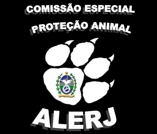 Comissão especial do Rio de Janeiro