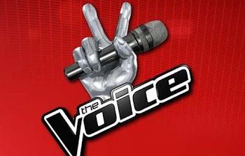 ΧΑΜΟΣ: ΑΥΤΗ είναι η νέα παρουσιάστρια του Voice που έχει προκαλέσει σάλο στα social media [photo]