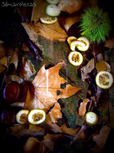 diy, cuadro de hojas caídas y frutos de otoño
