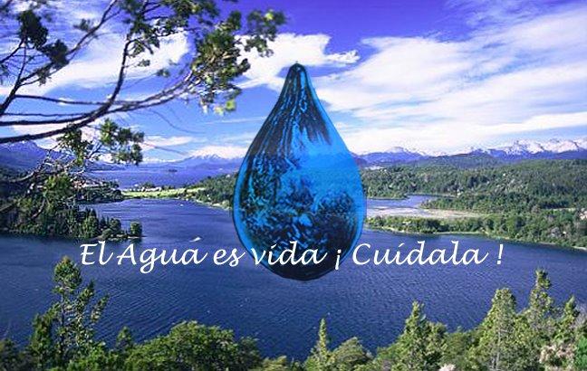 El agua y su importancia.