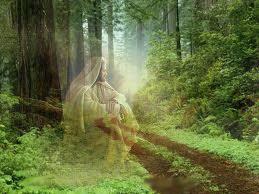 SOU o caminho a verdade e a vida