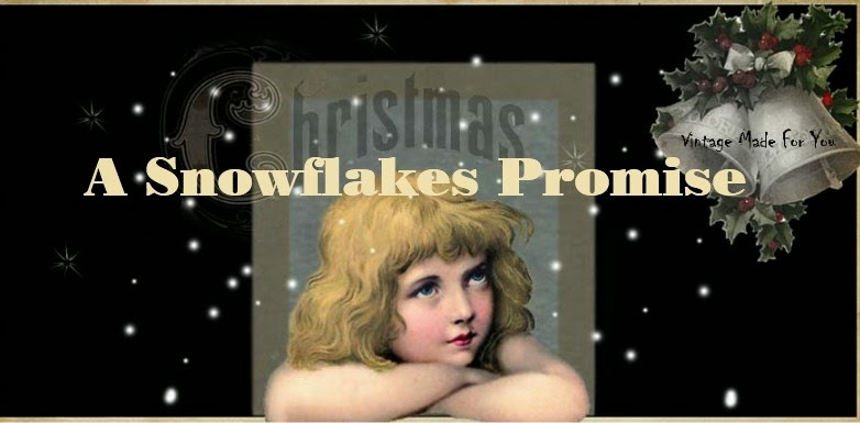 Jan 27th  A Snowflakes Promise