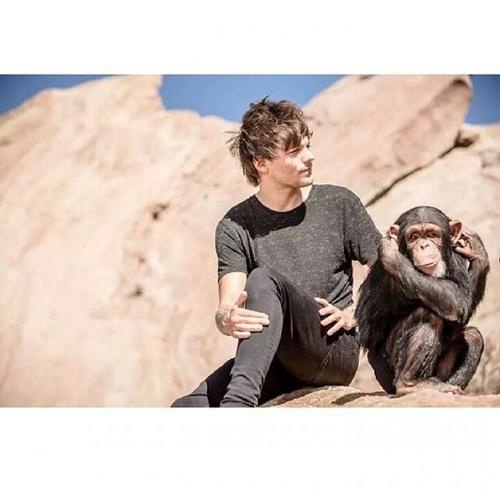 5 Ekor Monyet Dan 5 Karakter Manusia – Kisah Inspirasi