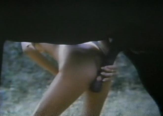 Resultado de imagem para julia e os poneis filme