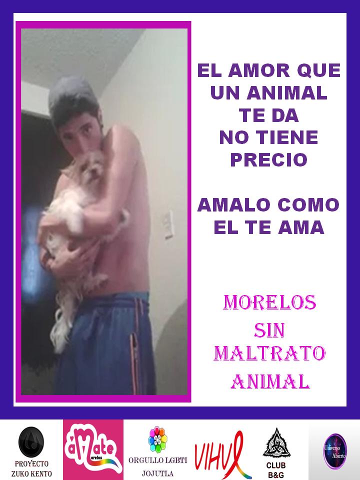 MORELOS SIN MALTRATO ANIMAL