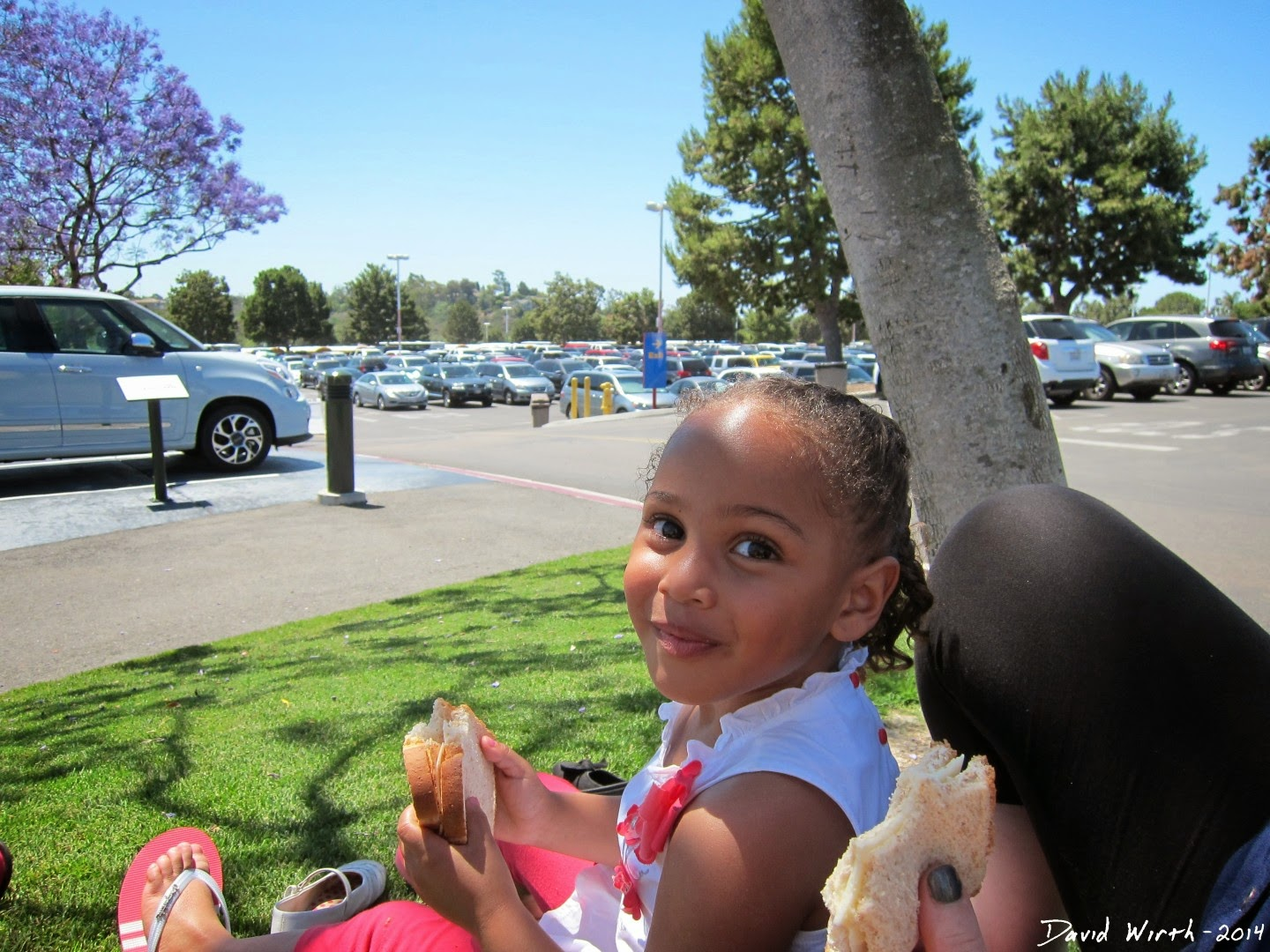 best places to eat in legoland, food, california