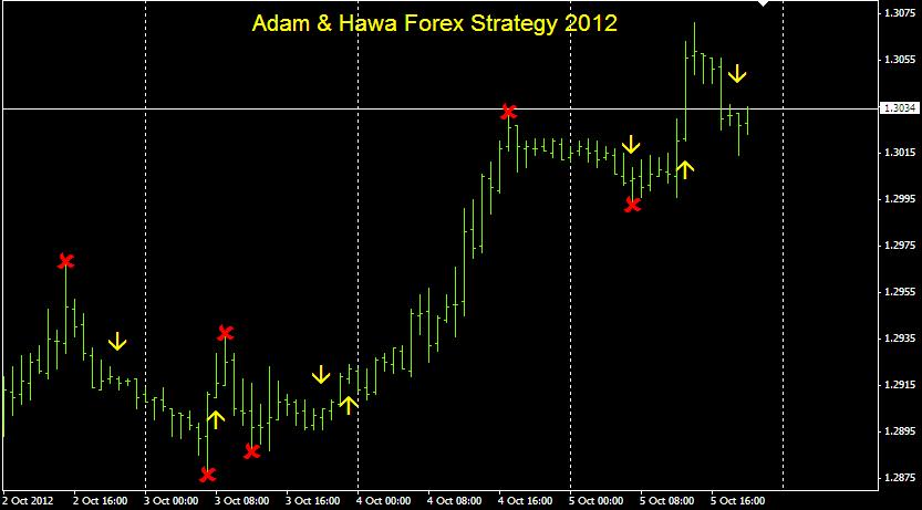 Faizumi fx trading system
